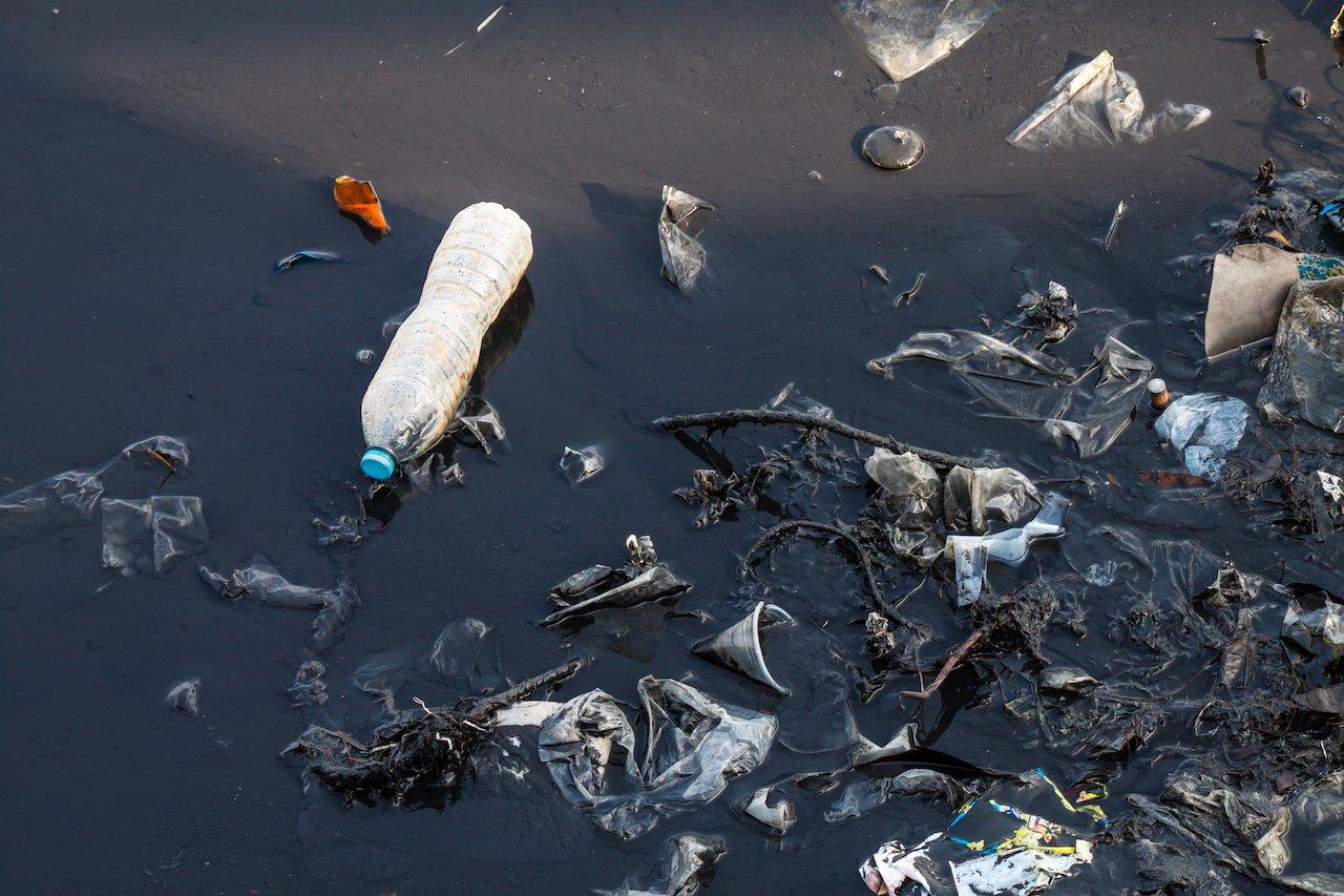 Plastikfressende Bakterien