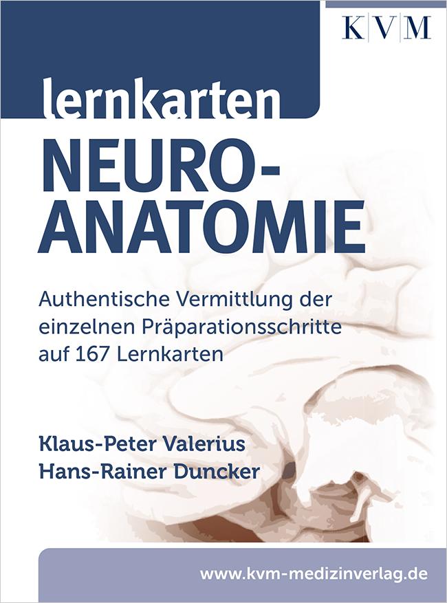 Valerius: Lernkarten Neuroanatomie
