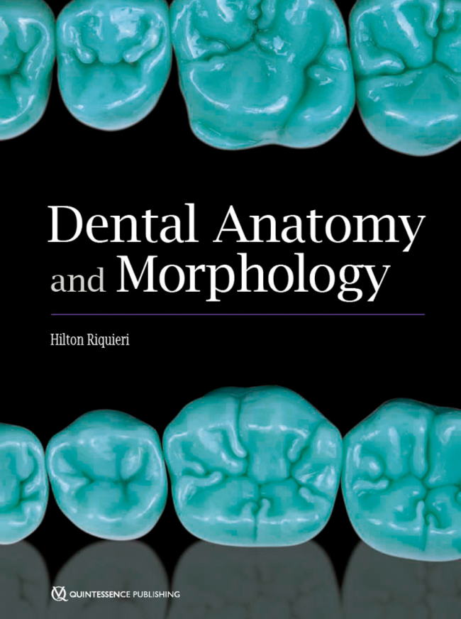 Riquieri: Dental Anatomy and Morphology