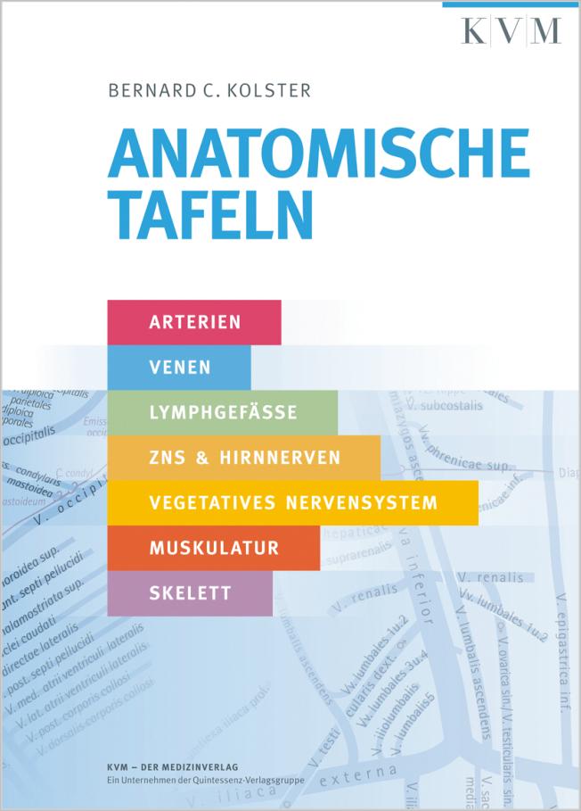 Kolster: Anatomische Tafeln